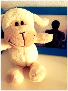 Zugegeben: Dieses Schaf führt eigentlich ein verstecktes Dasein. Man schenkte es mir einst zum Abschied.